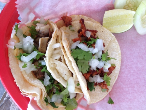 taco trucks norton road columbus